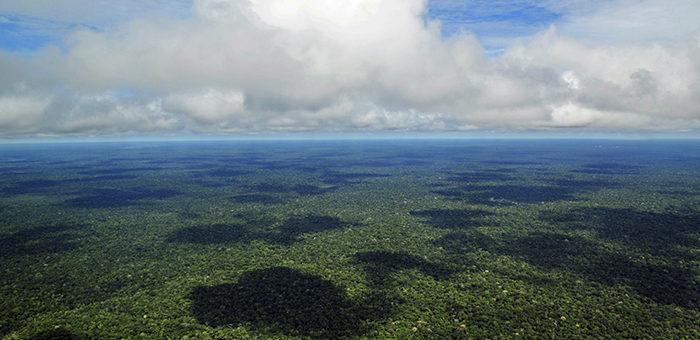 Presidente do STJ diz que Amazônia deve ser preservada para todo o mundo